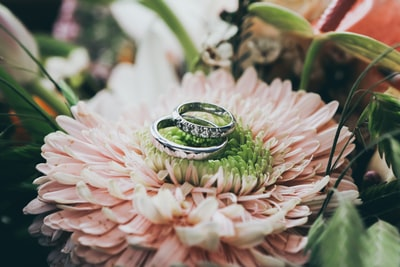 When is your wedding day? – Photographer: A wedding photographer from India, the momentous wedding photographer